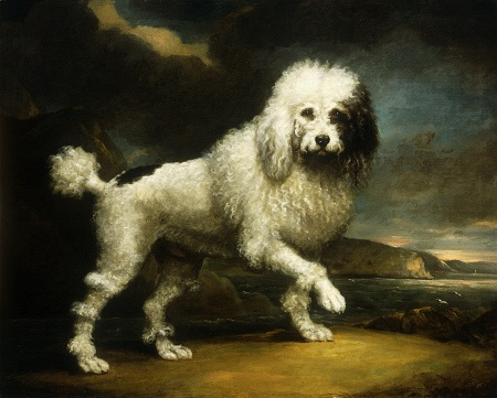old poodle painting.jpg